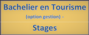 bac gestion stage